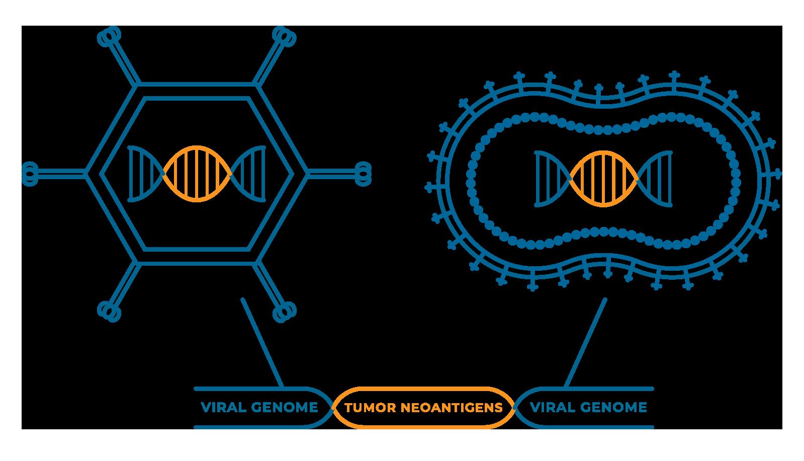 Nouscom • Re-defining innovation